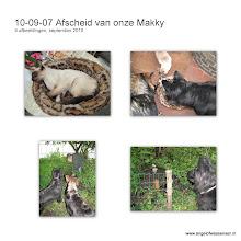 Photo: En dan wordt Makky aan gereden, hij overleeft het niet