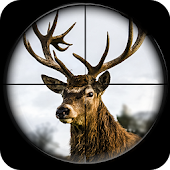 Deer Hunting Sniper Game 3D