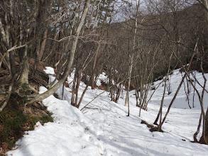 雪の上を進む