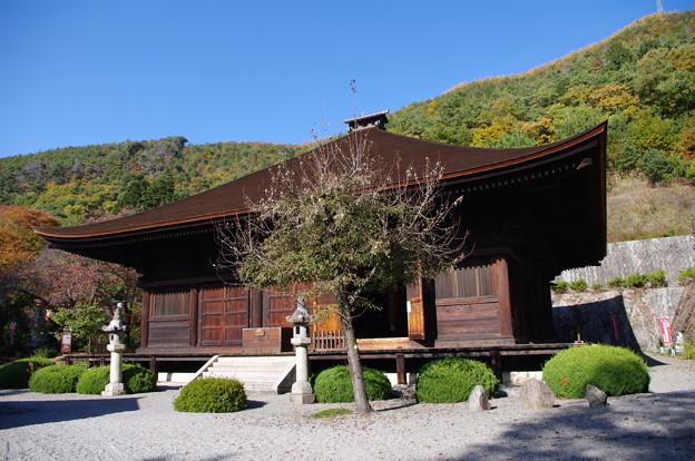 大善寺薬師堂 - 写真共有サイト「フォト蔵」