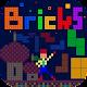 Fun! Bricks