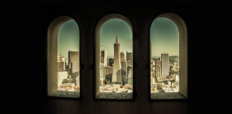San Francisco triptych  by Artem Kevorkov - Buildings & Architecture Public & Historical ( window, skyscrapers, buildings, architecture, triptych, san francisco, downtown, sun )