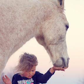 Feeding time by Chrismari Van Der Westhuizen - Babies & Children Children Candids ( animals, horses, horse, childhood, kids, farmanimals,  )