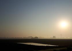 Nebbiolina sui campi arati