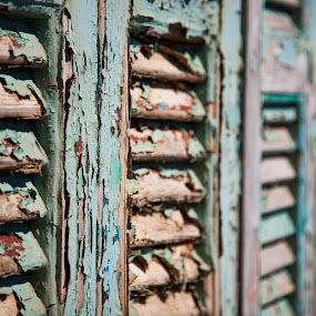 Flaking paint by Andy Cain - Abstract Patterns ( doors, old, wooden, flaking, wood, paint, decaying, shutters )