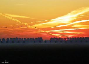 Photo: Nederland - natuur - zonsondergang Fot: Dick Dordrecht