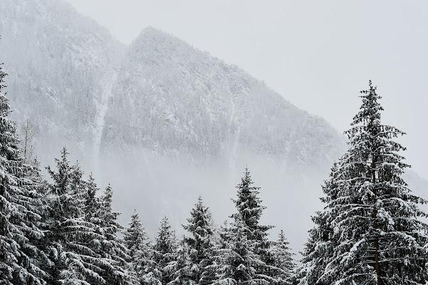 White Mountain di iSimo