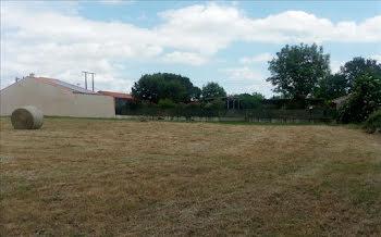 terrain à Vielmur-sur-Agout (81)