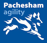 Pachesham agility logo that links to the home page