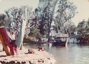 Photo: el parque de curuzú cuatiá, en aquella época