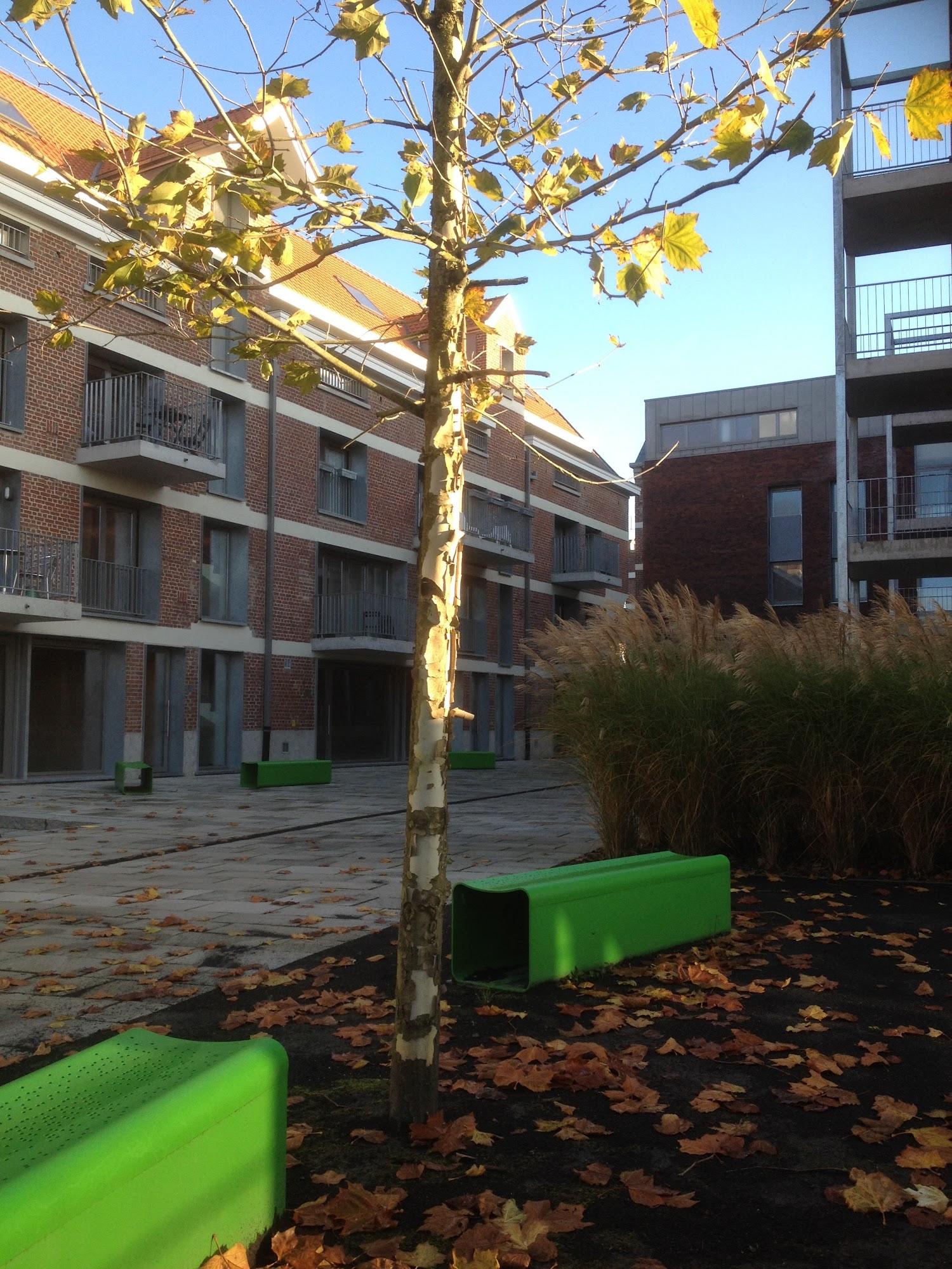 De Rua zitbanken in het groen uit de collectie van Larus Design in het project Brouwerij De Neve te Dilbeek naar een ontwerp van Wim Van Mello