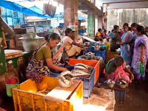 Photo: Fish Market - Pondicherry Tamil Nadu