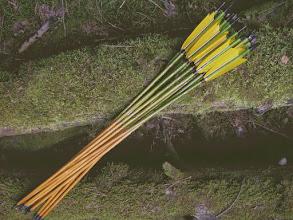 """Photo: Стрелы """"бамбук"""". Прямое древко (ель). Морилка. Золотой крестинг."""