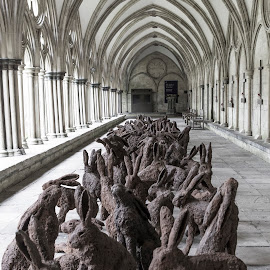 Salisbury Cathedral by Chris Seaton - Buildings & Architecture Public & Historical ( england, statues, rabbit, cathedral )