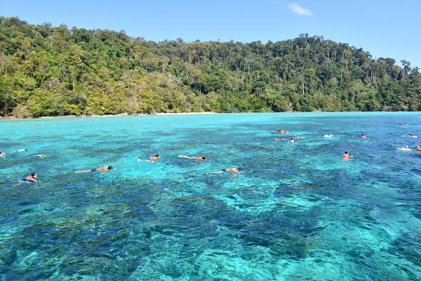 Snorkel in open water between the sister islands of Koh Rok