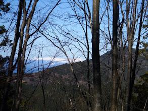 樹間から白山