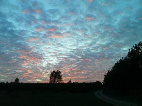 Photo: Leśny koniec września wieczorową porą
