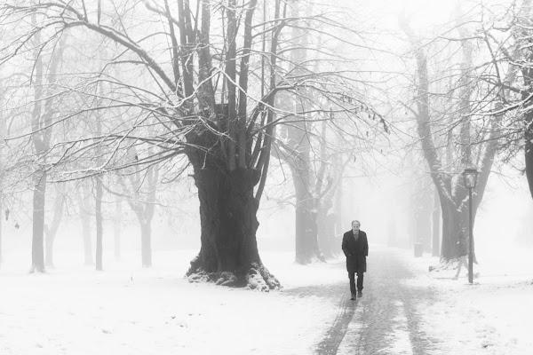 Lonely walk di Miki Sarace