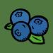 Useful Nova Scotia Plants Icon