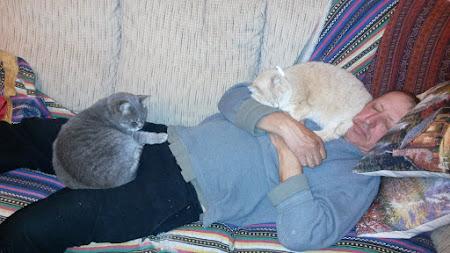 Тратата, мы везём с собой кота, и ещё с собой кота, и ещё собаку (авто, Европа, 12000 км)