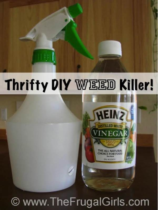 Thrifty Diy Weed Killer Just A Pinch Recipes