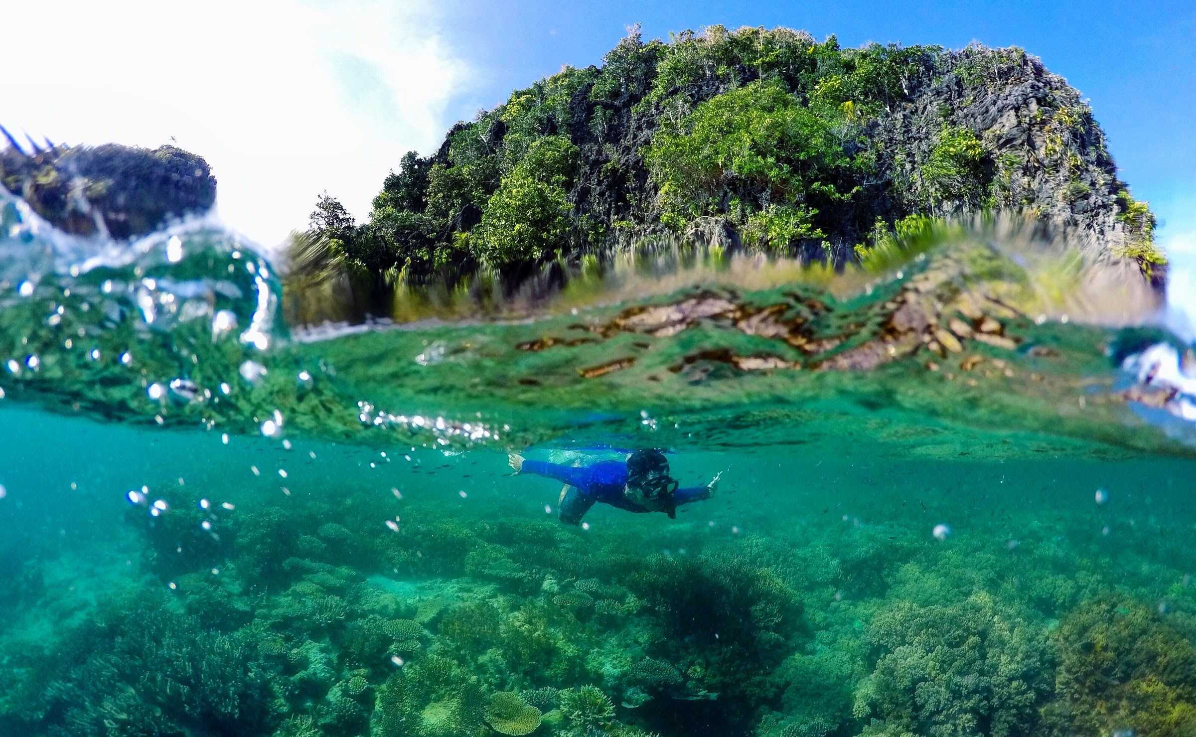 Snorkeling di Misool, Raja Ampat