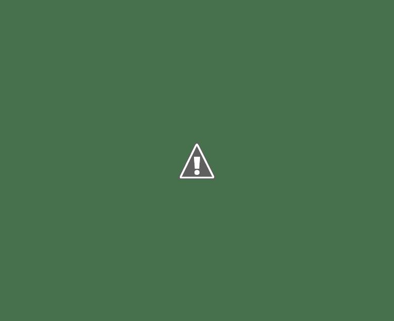 AGENCIA 011: LA ÚNICA JUGADA PARA HACER, ES LA DE QUEDARSE EN CASA!