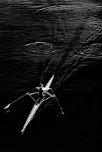 Photo: Arrow