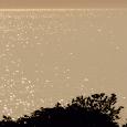 Sunny Sea Live Wallpaper icon