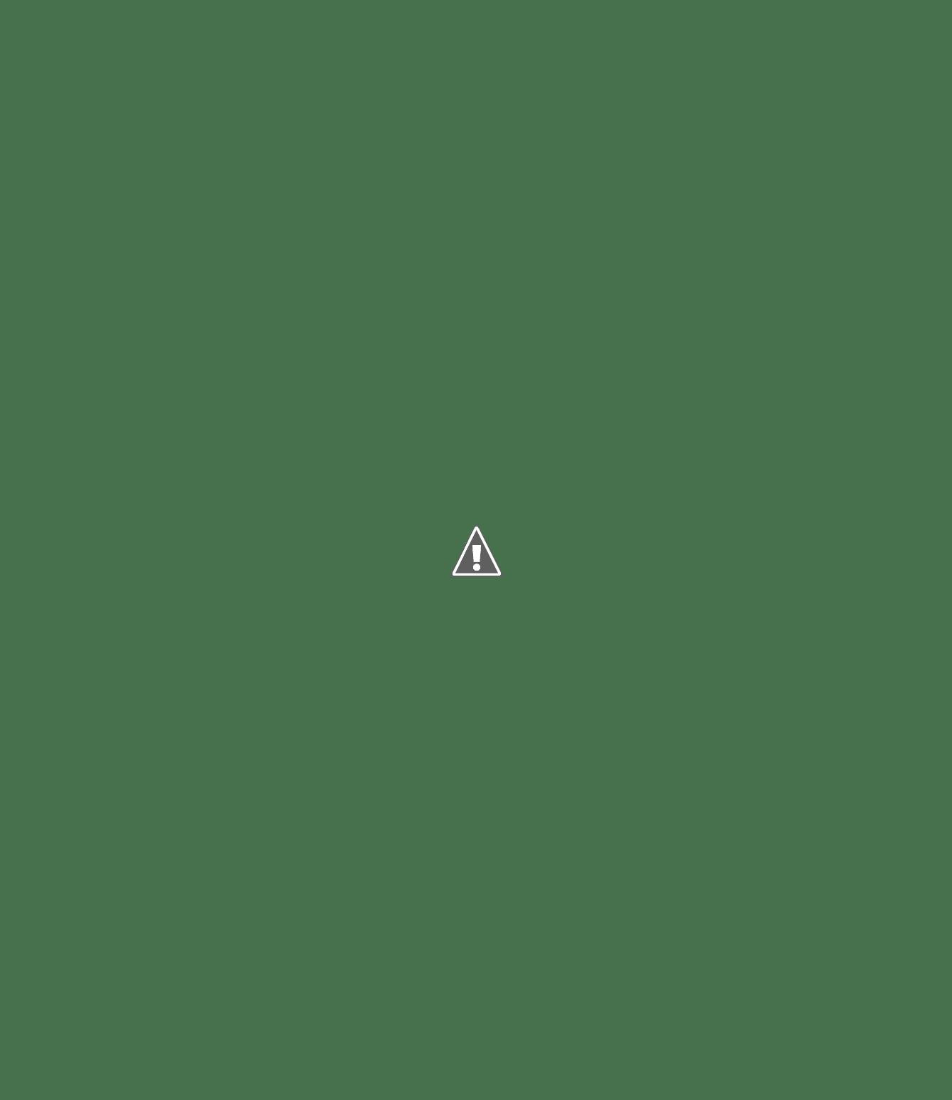 Liebig Tischkarte Menu