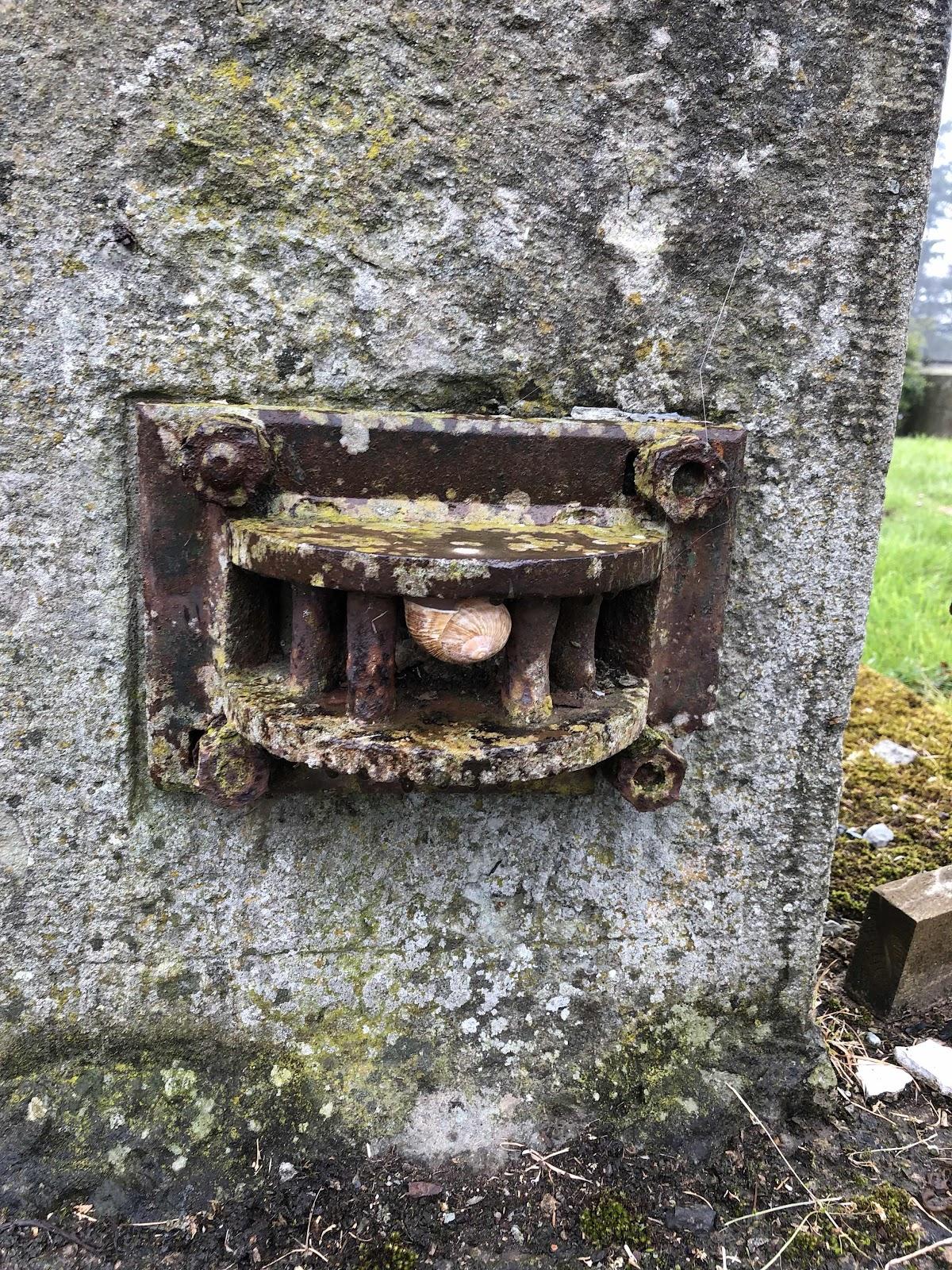 Snail micro geocache