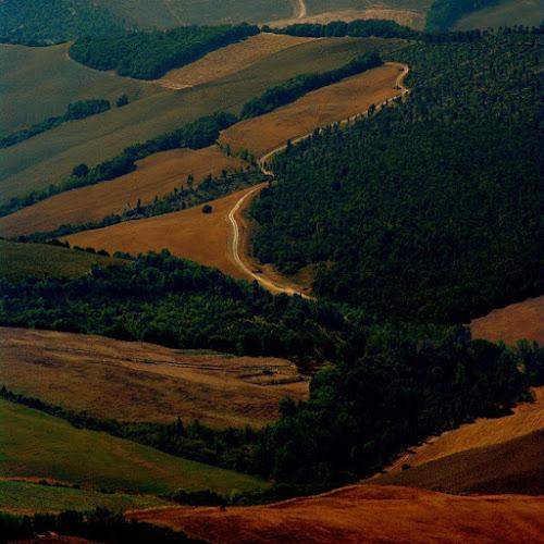 Tra boschi e terre di gianni87