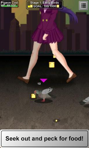 Pigeon Coo