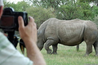 "Photo: Photo of me ""shooting"" a white rhino. The rhino passed about 10m from where I was sitting in front of our tent. Bontle Camping Site, Marakele National Park, South Africa.  See also the other photos in this incomplete album."