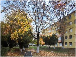 Photo: Str. Rapsodiei, spatiu verde intre blocuri - 2017.10.27
