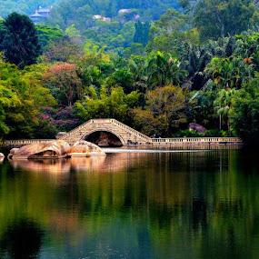 The bridge by Jaguar Ricko - Landscapes Weather ( landscape )