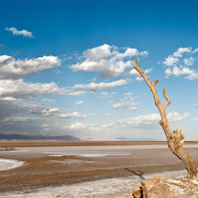 Tunisian salt lake Chott el Jerid by Giorgio Baruffi - Landscapes Travel ( 4x4, jeep, chott, tunisia, ksar ghilane, desartica, deserto, chenini )