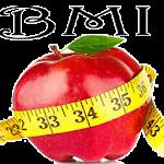 BMI calculator health meter Icon