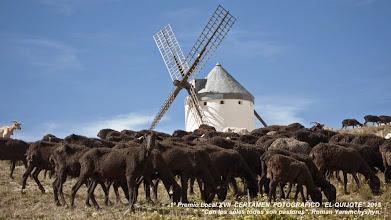 """Photo: 1º Premio Local:      Fotografía: """"Con los soles, todos son pastores.""""      Autor: Roman  Yaremchyshyn Yaremchyshyn                 Vecino de El Romeral. Toledo"""