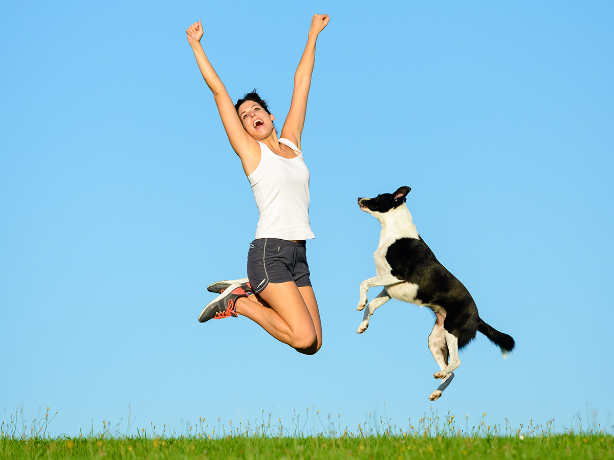 5 Simple Exercises to do with Your Dog