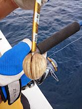 Photo: ・・・しかし「神ワザ」です! 貝がジグを喰ってます!