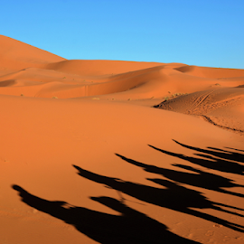 by Albina Jasinskaite - Landscapes Deserts