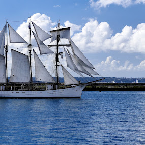 ready for the regatta by Fred Goldstein - Transportation Boats ( brest, ocean, france, sailboat, regatta,  )