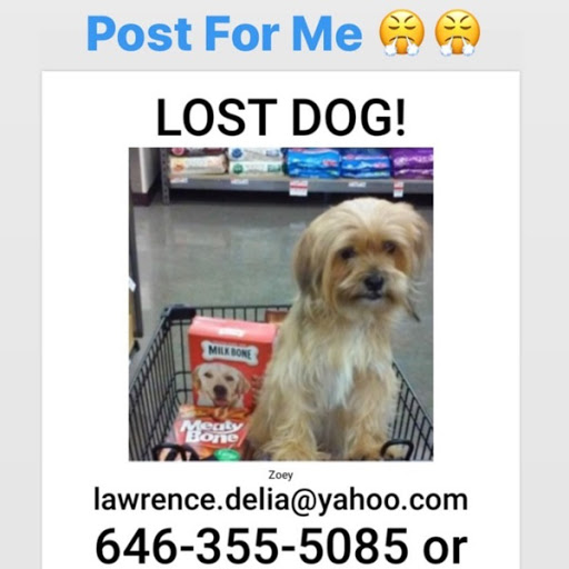 Zoey, MISSING Sep 1, 2019