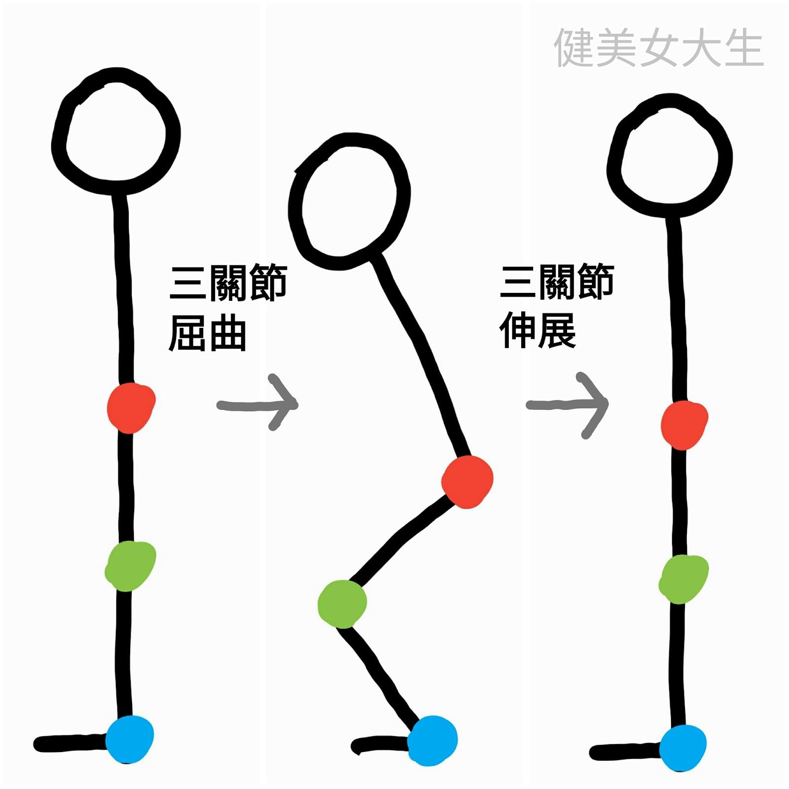 三關節屈曲與伸展
