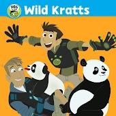 Wild Kratts: A China Adventure