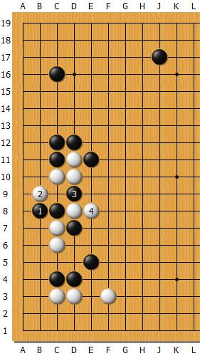 Fan_AlphaGo_05_C.png