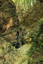 Photo: A Mecseknádasd melletti kis völgy az alsó-jura korú Mecseknádasdi Homokkő Formáció rétegeit tárja fel