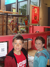 Photo: The second day was in Halifax, Nova Scotia and first stop was the Maritime Museum with this fun parrot