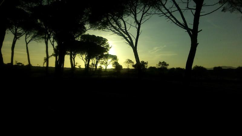 Summer sunset di Da